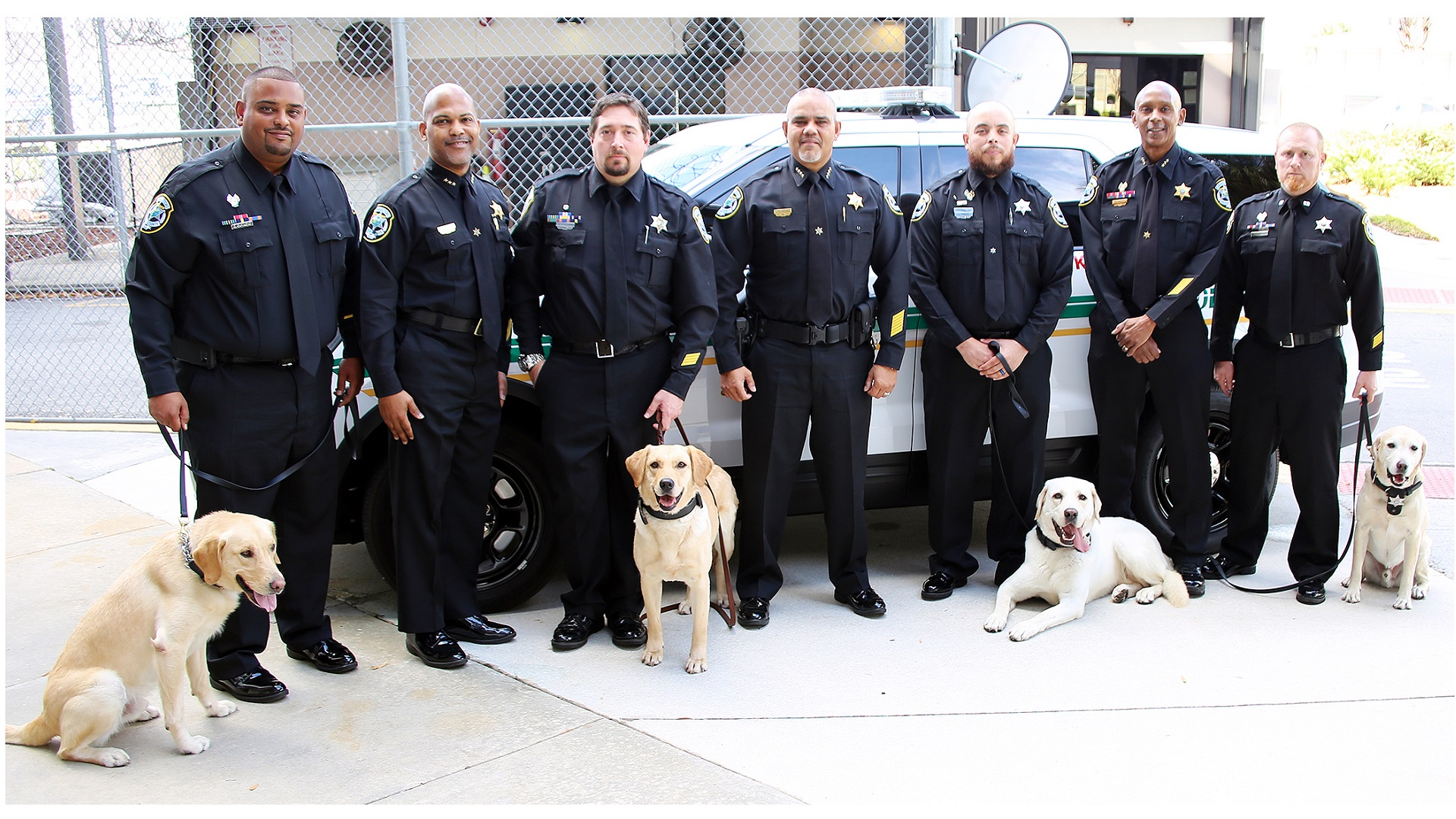 Image of Chief, DC's, and K9's